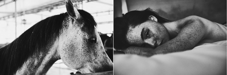©roeg_cohen_alexandrai_pony_s.o.g-2