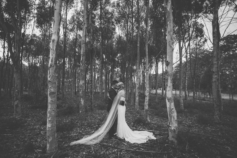 Ash and Rach Wedding-159