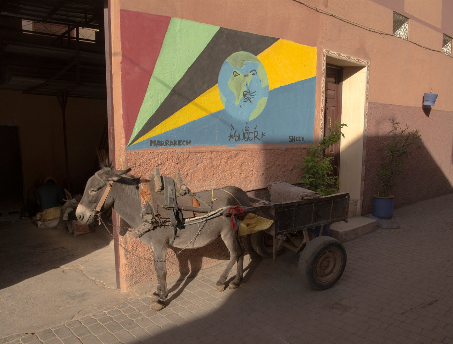 marrakech-donkey-by-peter-ydeen
